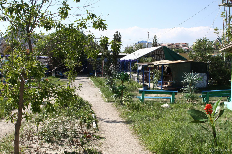 Кемпинги в Крыму 2019. Кемпинг Химик, Коктебель